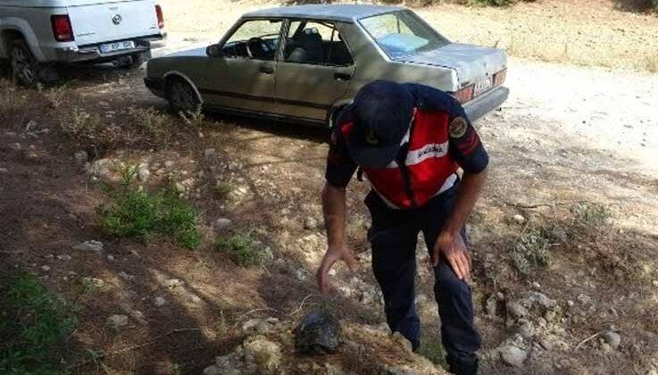 Manavgat'ta jandarma, kaplumbağayı yanmaktan kurtardı