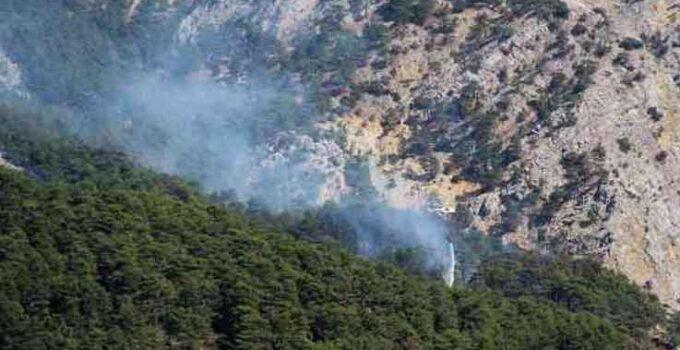 Yıldırım düşmesi sonucu çıkan orman yangınına 3 farklı noktadan 1,5 km'lik hortumlarla müdahale ediliyor